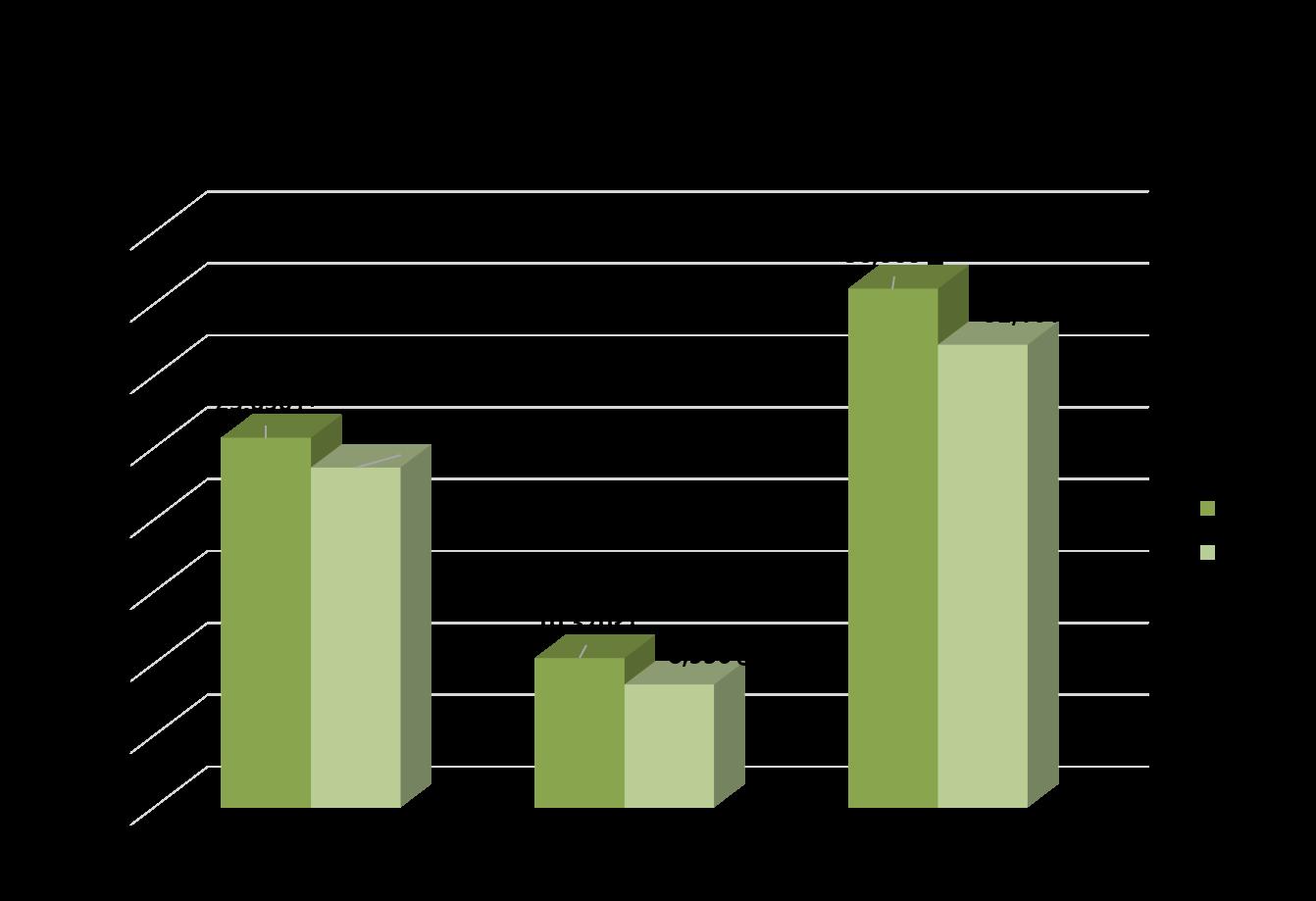 2005-2020 이주외국인 상담누적현황.png